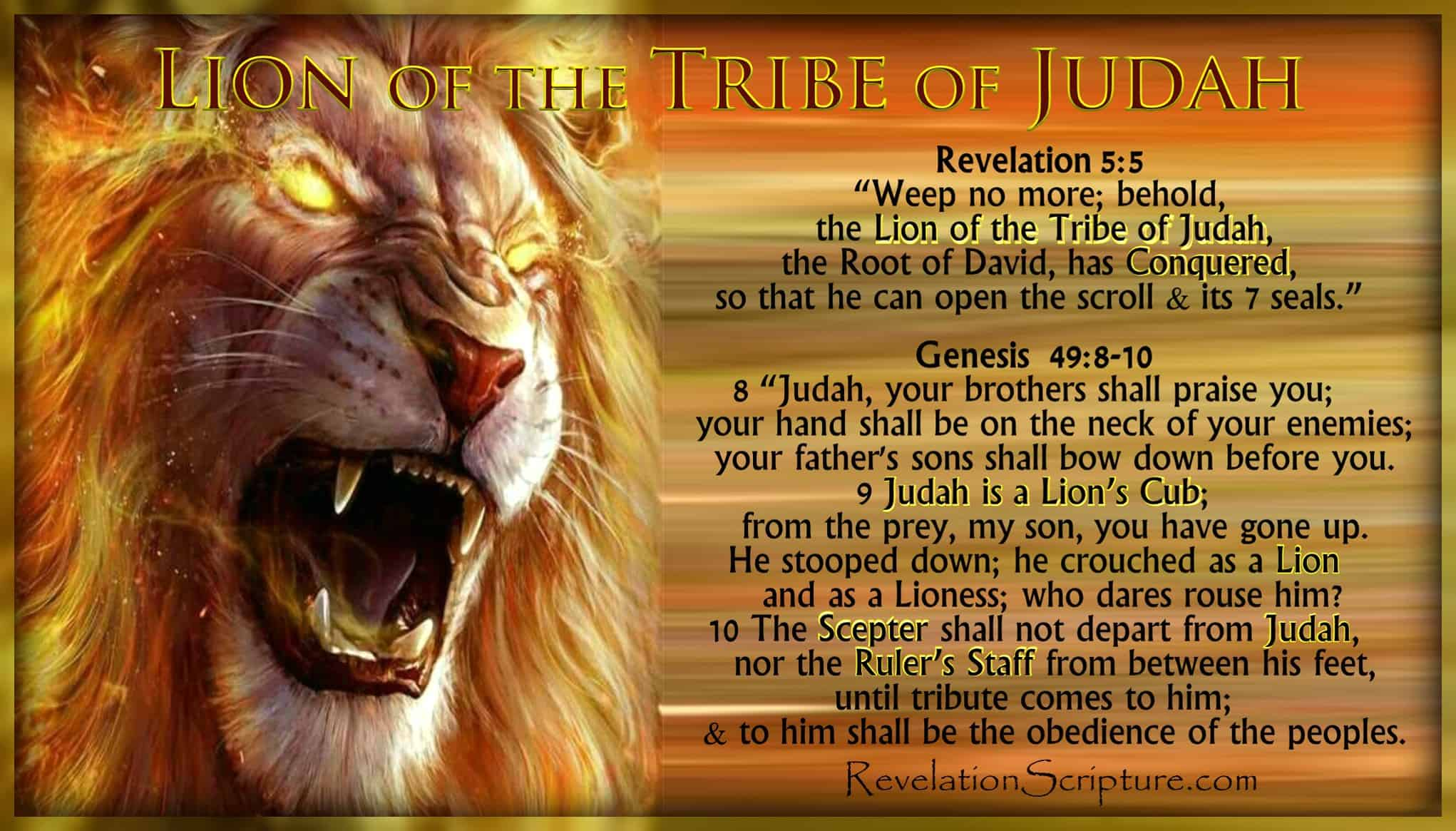 Lion of the Tribe of Judah,Judah,Lion,Revelation 5,Genesis 49,Gen 49,Rev 5,Jesus,Christ,Conquered,Overcame,Root of David,Lion Cub,Scepter,Ruler's Staff